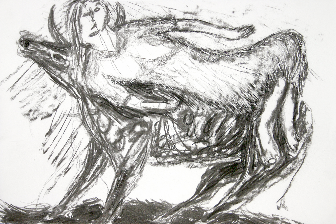 the abduction of europe (2003, drawing by Frank Waaldijk)